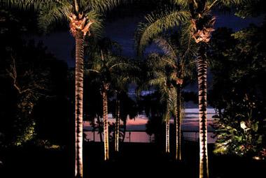 Landscape By Palmer image 7