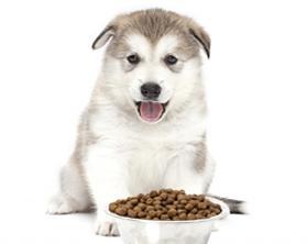 Harold's Feed & Pet Supply image 5