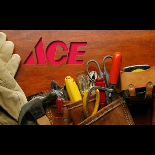 Ace Hardware-Delavan