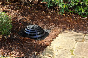 Andy's Sprinkler, Drainage & Lighting image 8