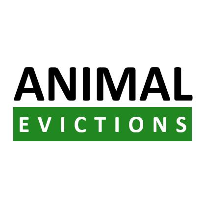 Animal Evictions