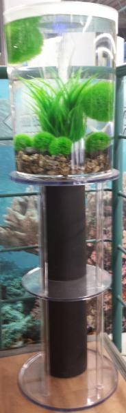 Aquarium Drummond à Drummondville