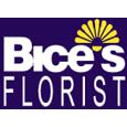 Bice's Florist