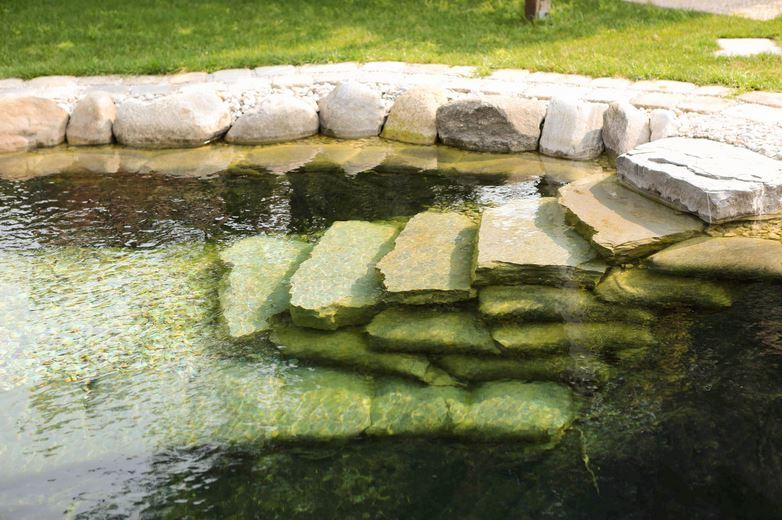 Zemann garten gmbh wien garten und landschaftsbau for Gartengestaltung 1210 wien