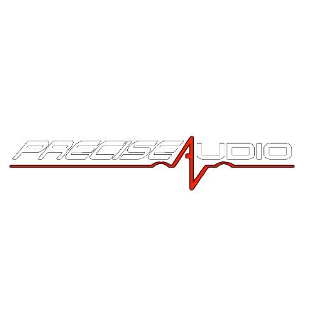 Precise Audio, Inc
