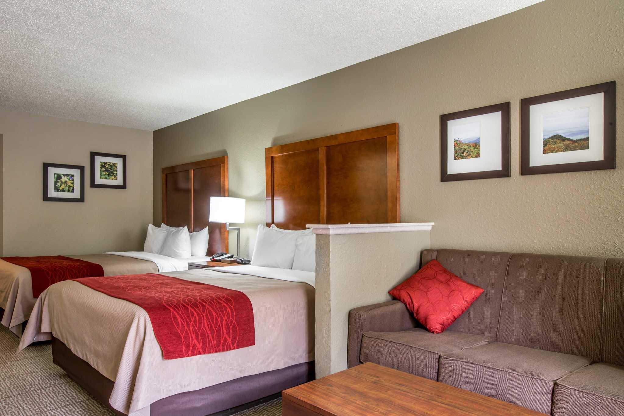 Comfort Inn & Suites at Dollywood Lane image 22