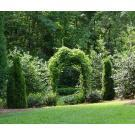 Decorative Creations Inc - Matthews, NC - Landscape Architects & Design