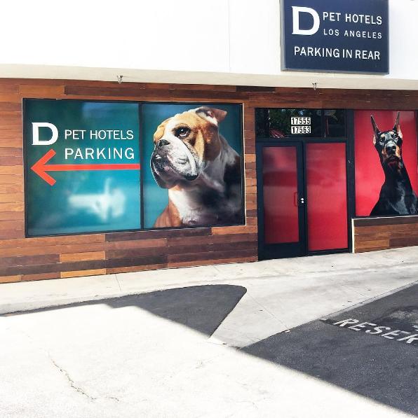D Pet Hotels Los Angeles image 15