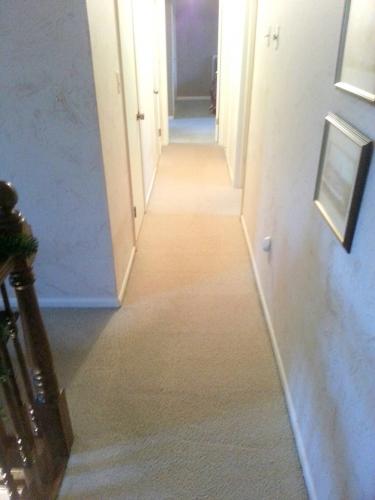 One Stop Carpet Care & Repair image 1