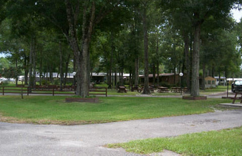 Starke / Gainesville N.E. KOA image 21