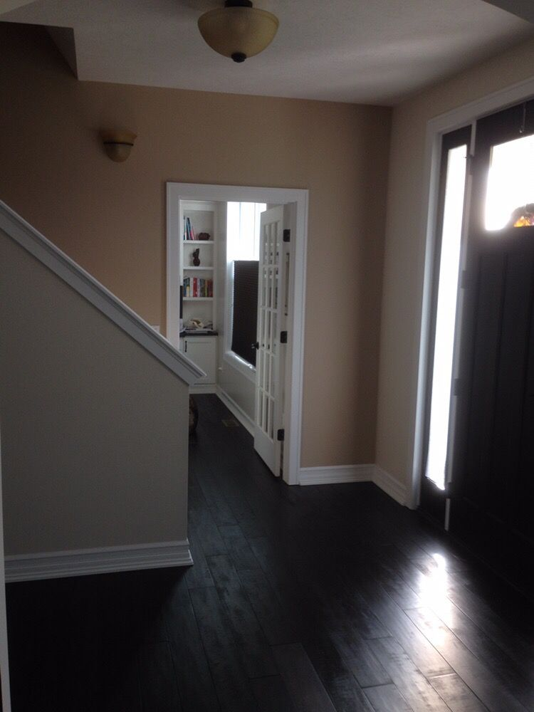 STP Painting and Remodeling image 3