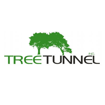 Tree Tunnel Carpet Cleaning