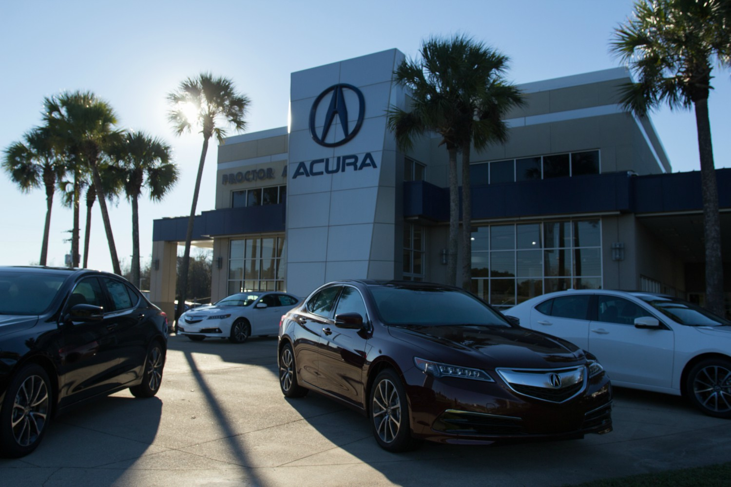 tallahassee fl proctor acura find proctor acura in tallahassee fl. Black Bedroom Furniture Sets. Home Design Ideas