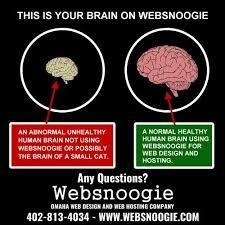 This is your brain without Websnoogie