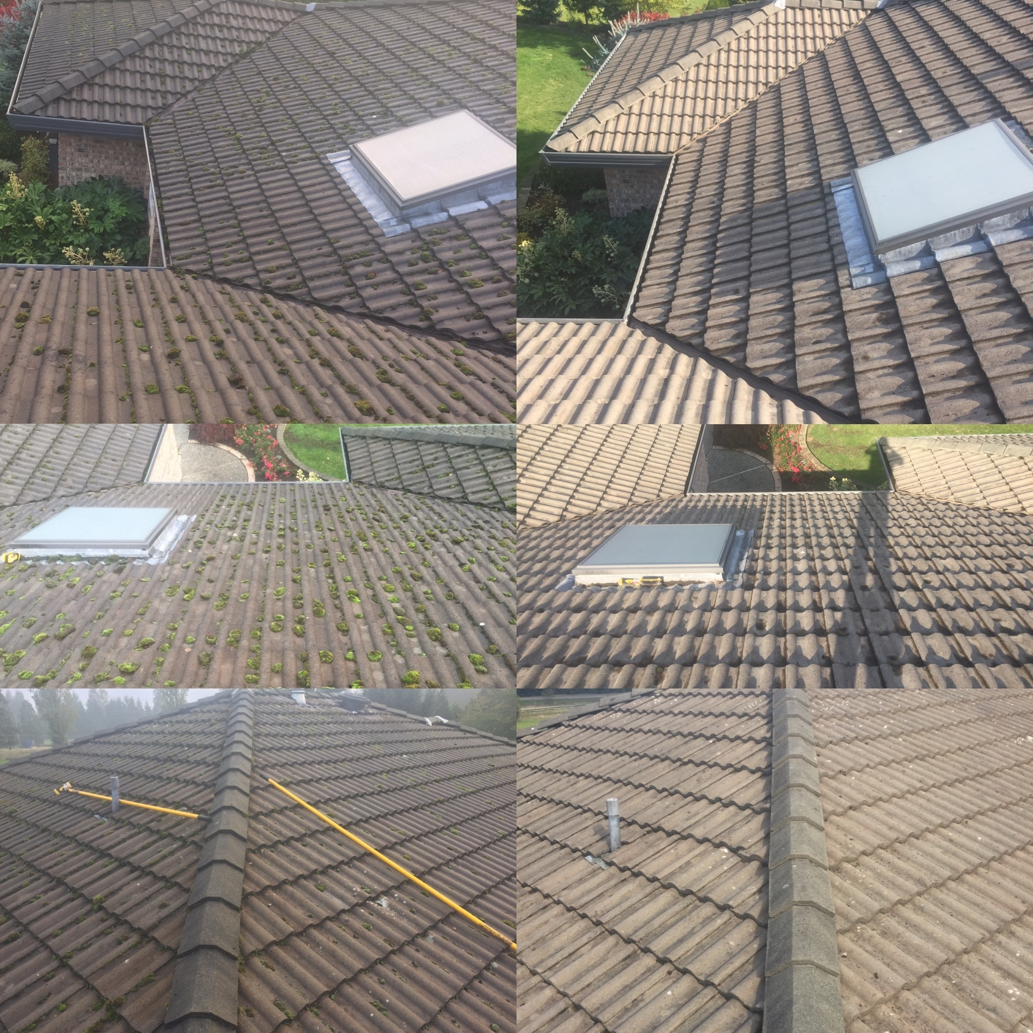 Coastal Roof Cleaning Experts
