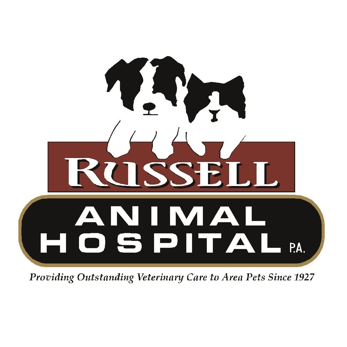 russell animal hospital p a in concord nh   603 724 6