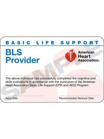 BLS CLASS - $50