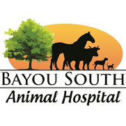 Bayou South Animal Hospital image 0