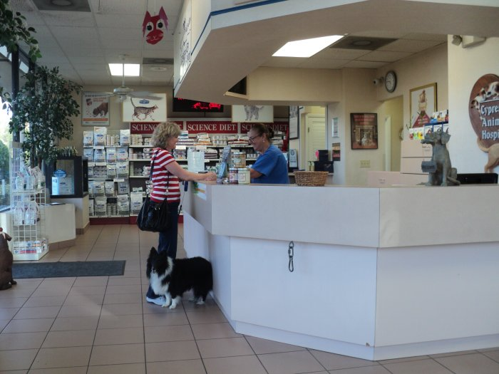 Coral Springs Animal Hospital – Wonderful Image Gallery