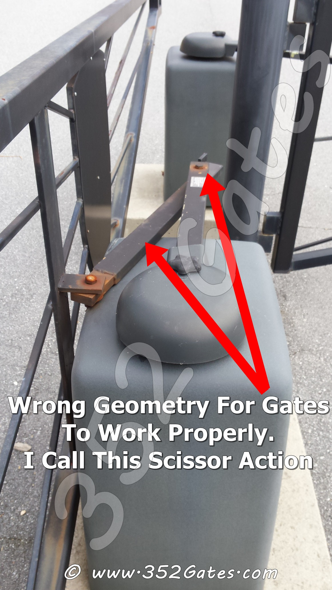 352 Gates, llc image 5