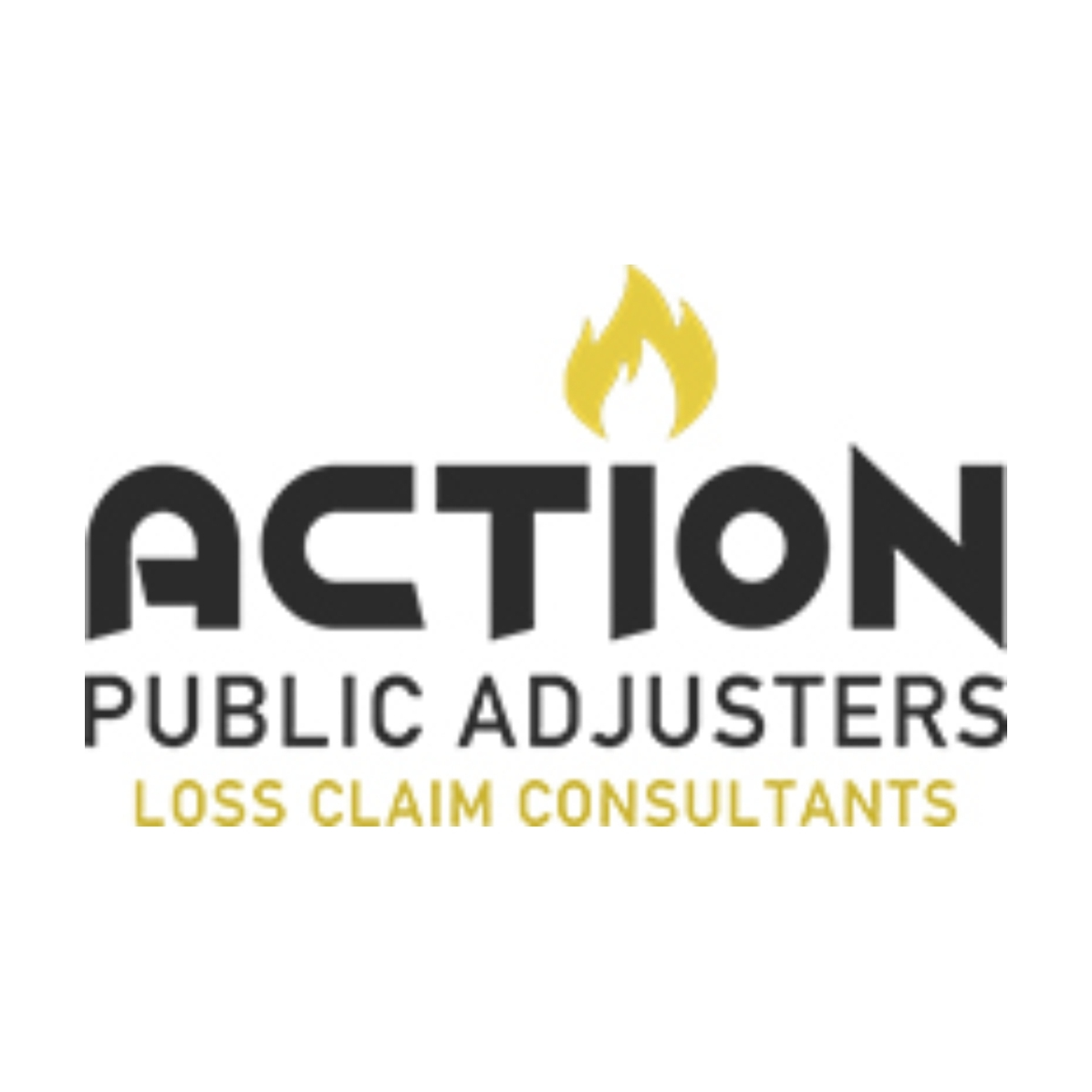 Action Public Adjusters