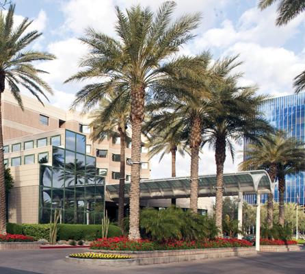 DoubleTree Suites by Hilton Hotel Phoenix image 4