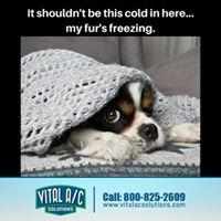 Vital AC Solutions Air Conditioning & Heating image 7
