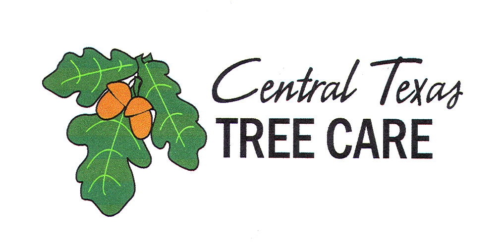 Central Texas Tree Care - Austin, TX - Tree Services