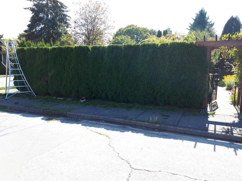 Anthony 39 s landscaping ltd delta bc ourbis for Landscape limited