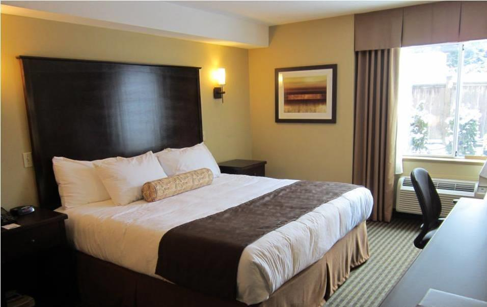 Best Western Maple Ridge Hotel in Maple Ridge: King Bed Guest Room