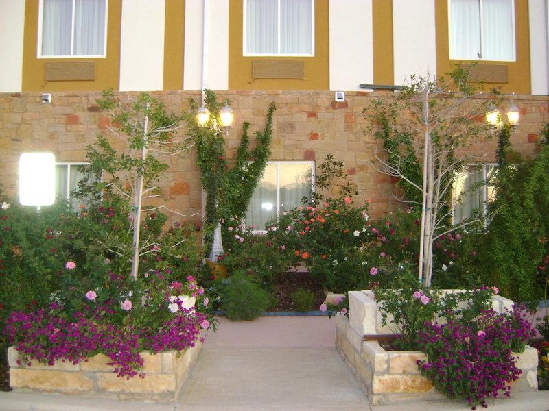 Best Western Plus Blanco Luxury Inn & Suites image 47