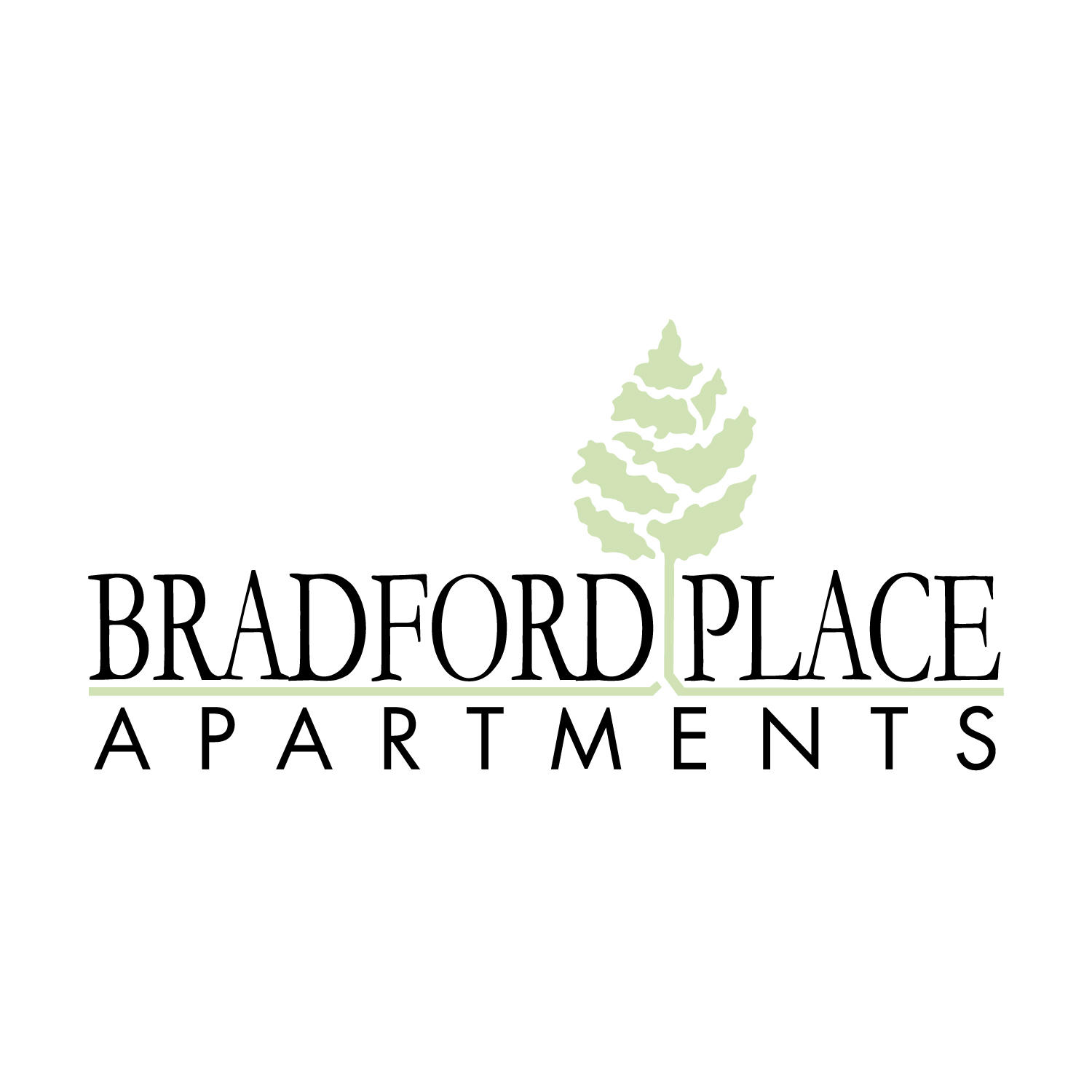 Bradford Place Apartments image 10