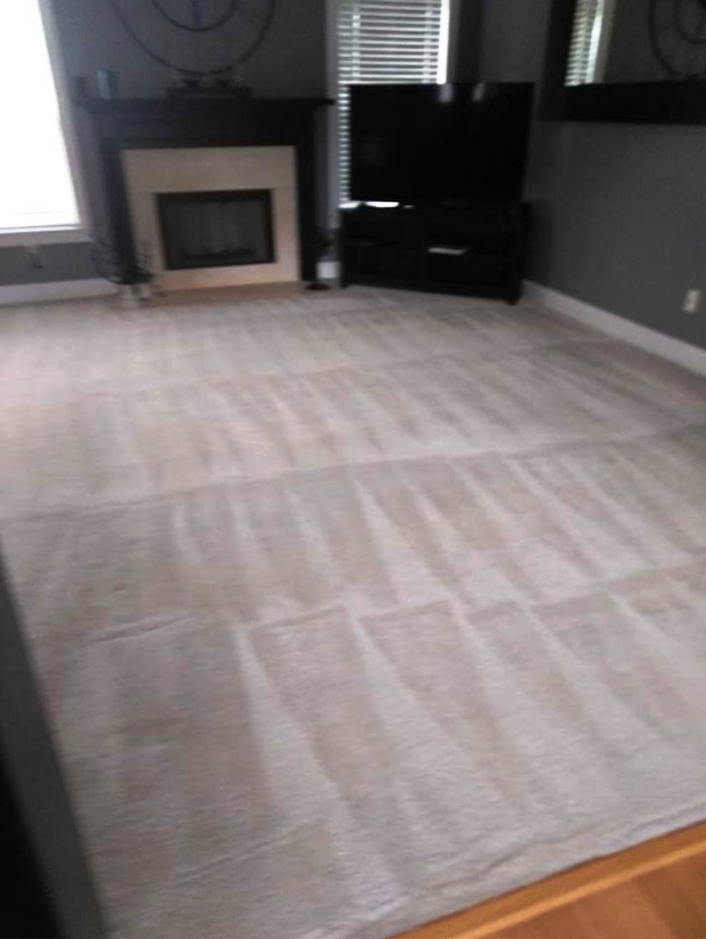 Purified Carpets image 2