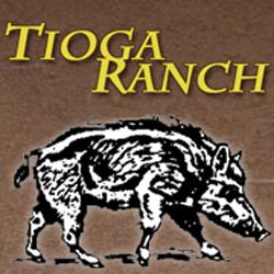 Tioga Boar Hunting image 10