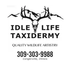 Idle Life Taxidermy