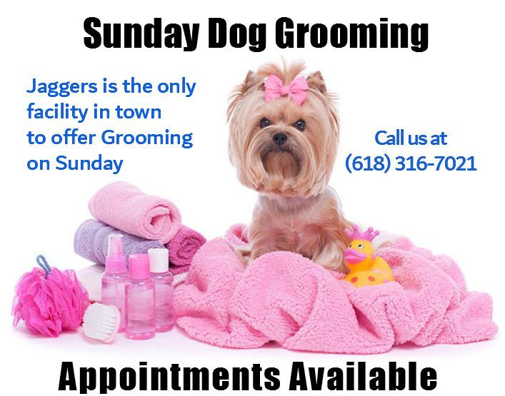 Jagger's Doggie Daycare, Dog Grooming, Training & Boarding image 26