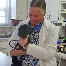 awesome care veterinary and laser center image 6