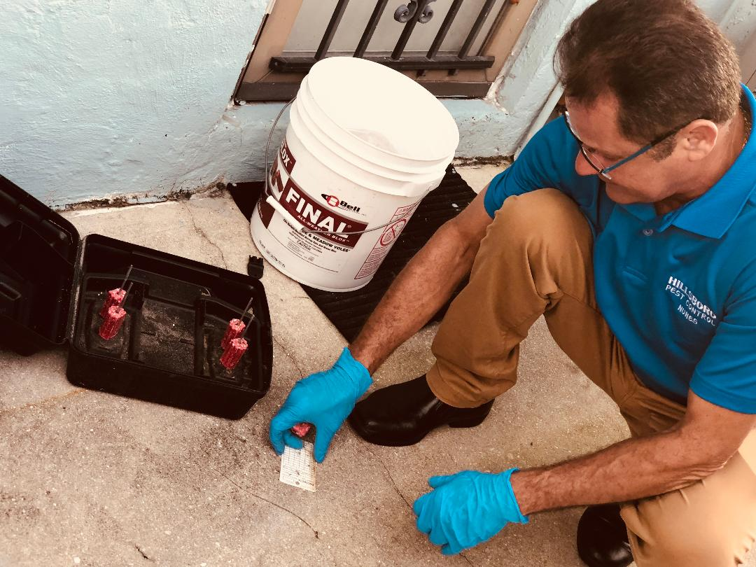 Hillsboro Pest Control image 3