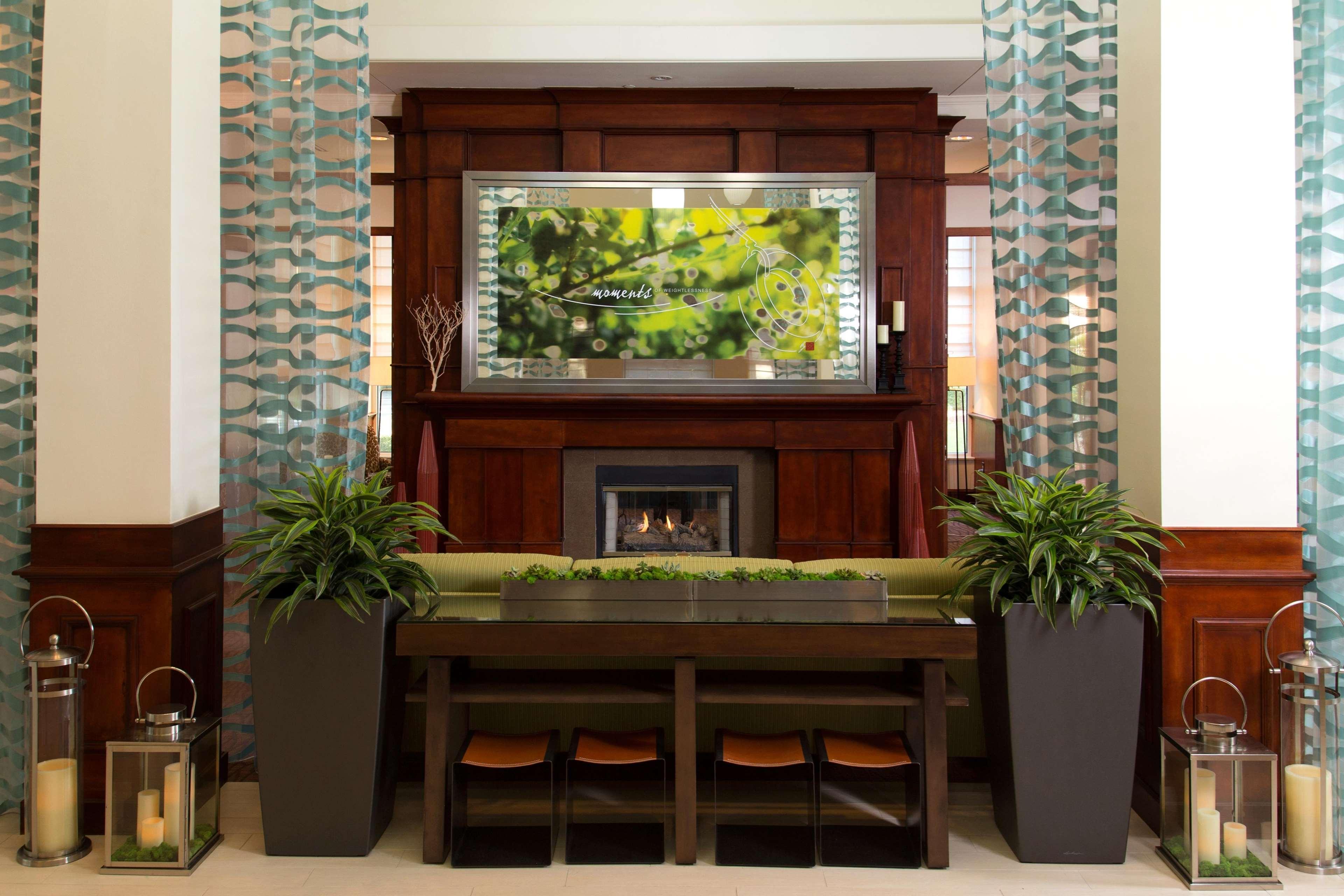 Luxury Hilton Garden Inn Oldsmar Adornment - Brown Nature Garden ...