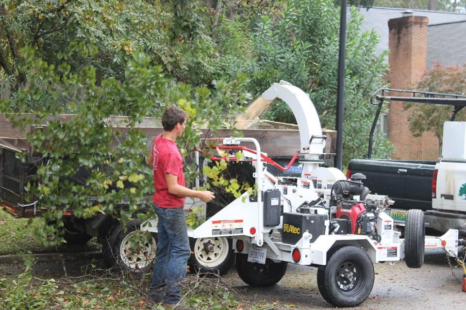 Tim Kilpatrick Tree Service image 8