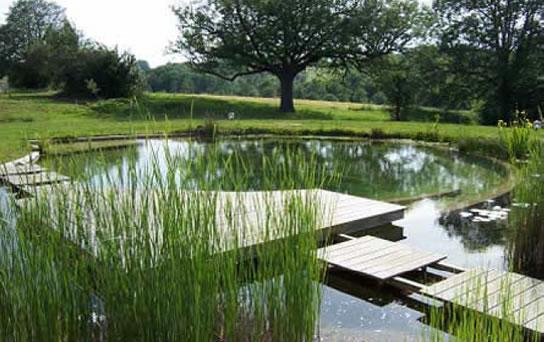 haus garten schwimmbad sauna in gochsheim weyer. Black Bedroom Furniture Sets. Home Design Ideas