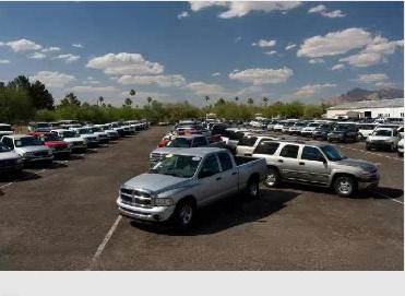 Cactus Auto Company Tucson Az Business Information