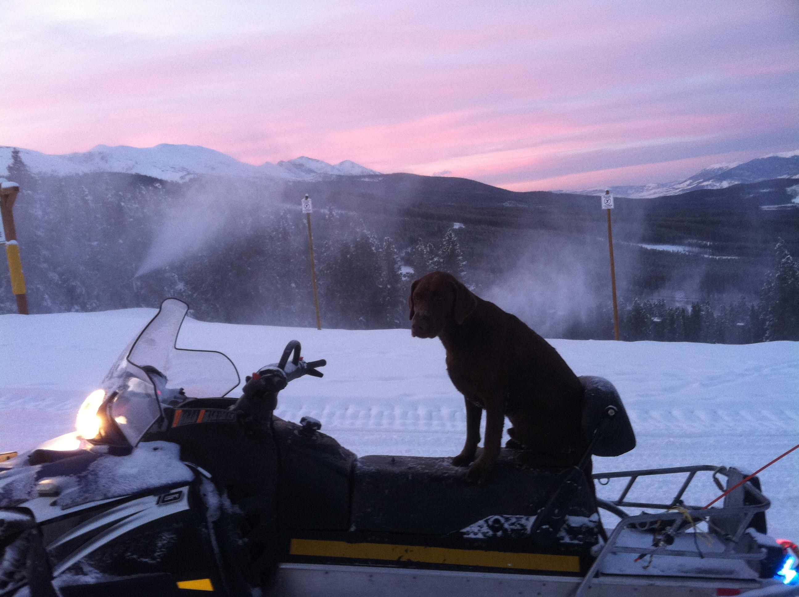 Colorado Backcountry Rentals image 3