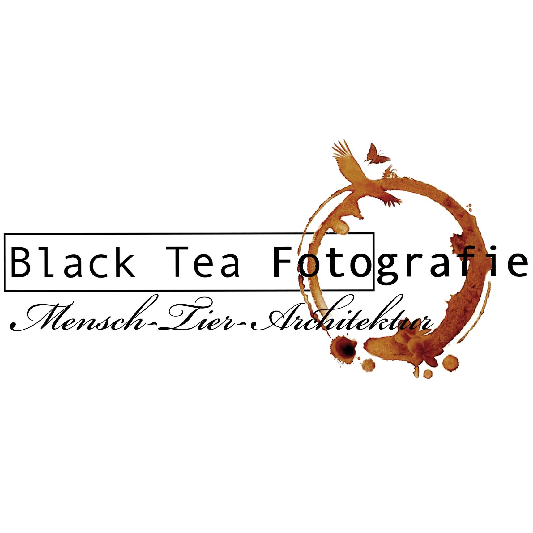 Black Tea Fotografie Viktoria Gstrein