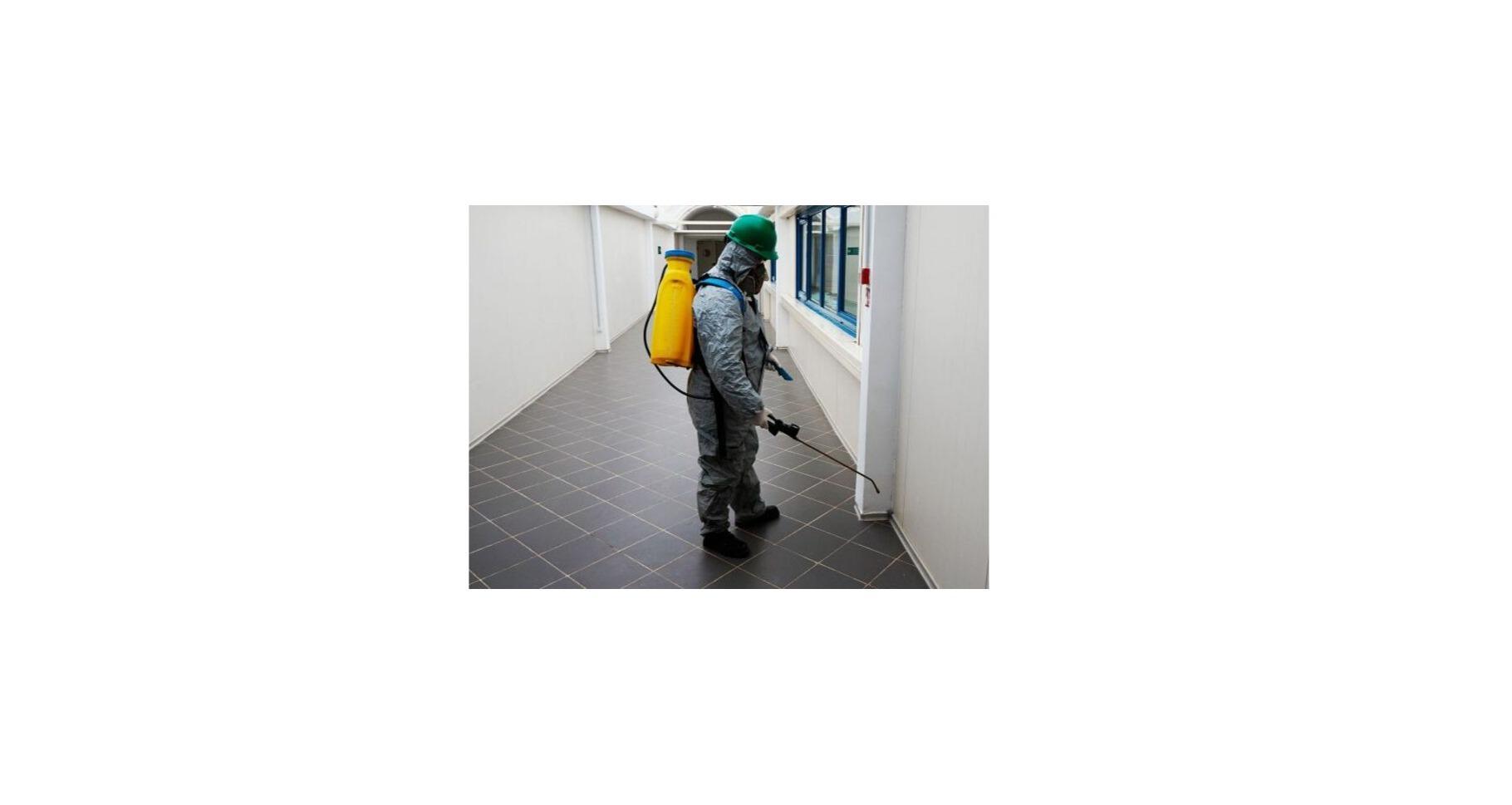 Rg Pest Solutions