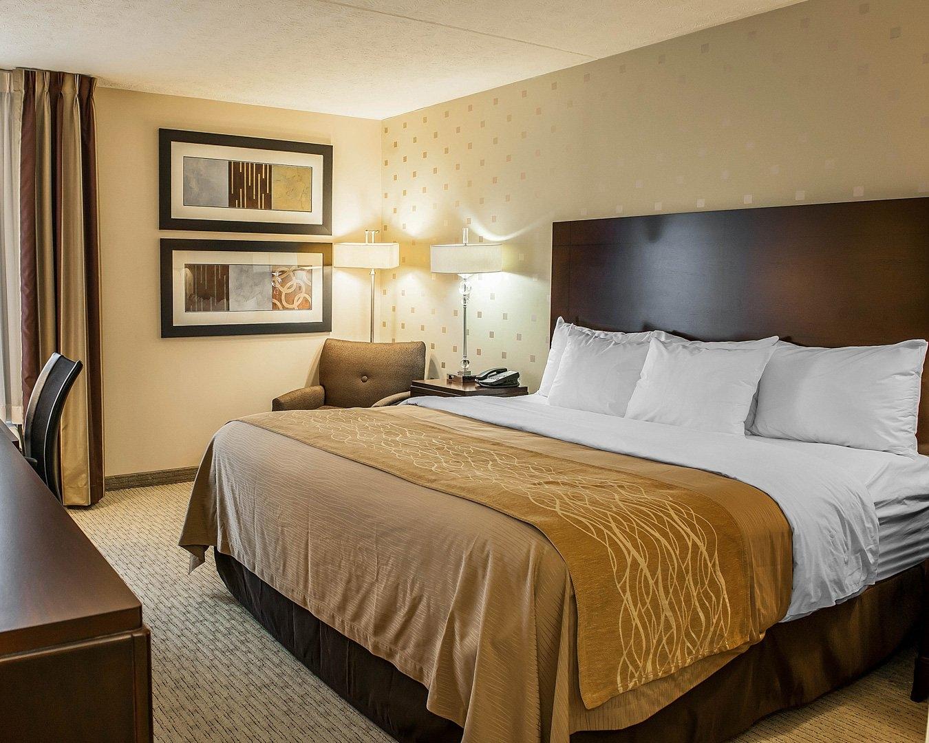 comfort inn in bloomington in whitepages