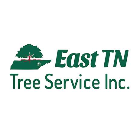 East TN Tree Service & Tree Removal
