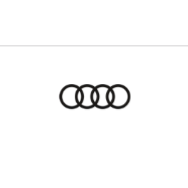 Audi Nashua