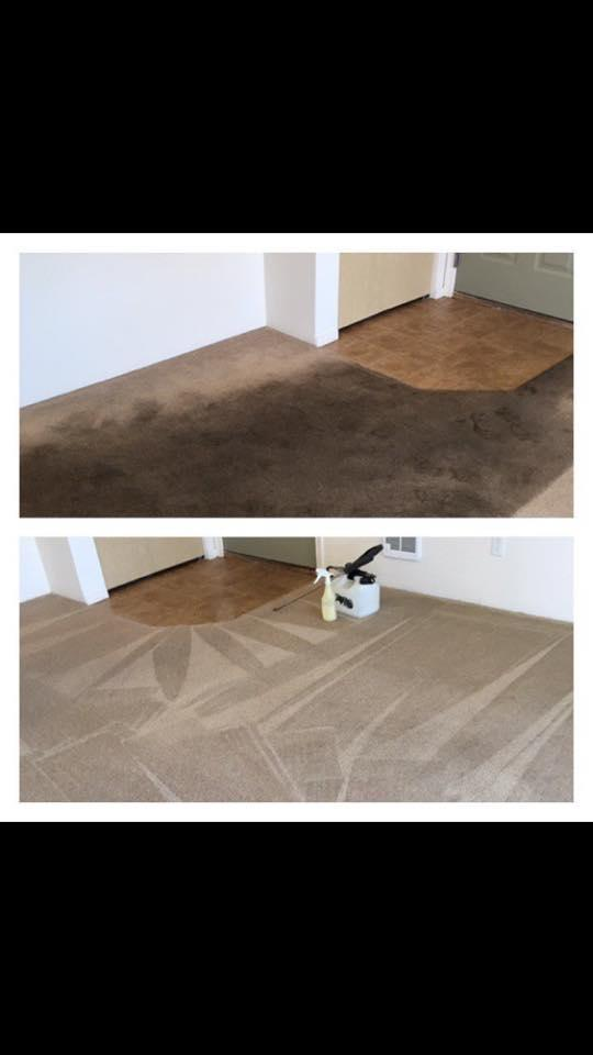 Xtreme Carpet Care image 0