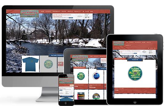ACS Web Design & SEO image 2